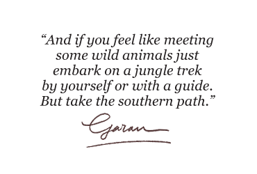 And if you feel like meeting some wild animals just embark on a jungle trek by yourself or with a guide. But take the southern path.